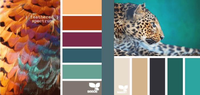 Interieurtips om uw persoonlijkheid in uw interieur te cre ren for Kleurcombinaties interieur